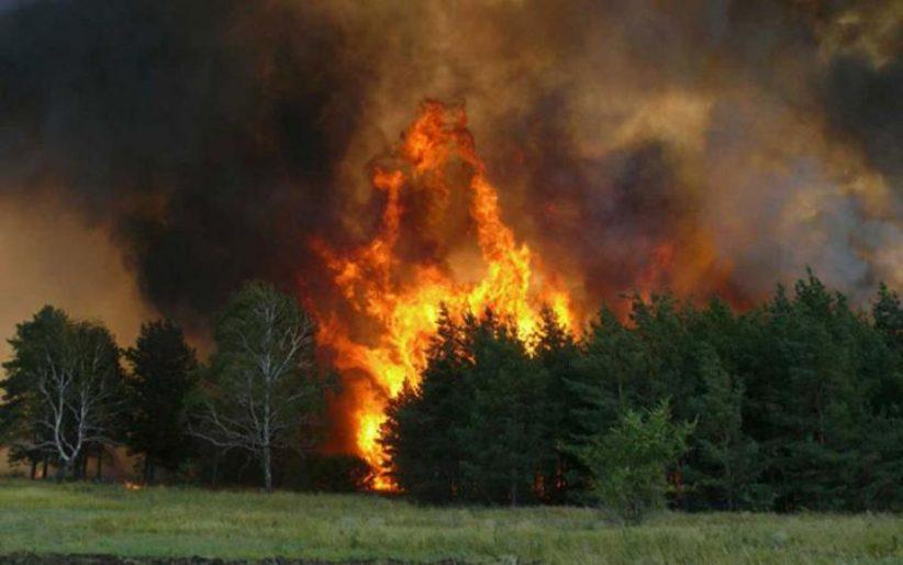 ДСНС попереджає про пожежну небезпеку найвищого рівня