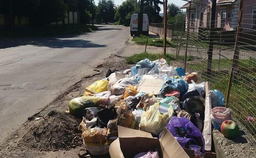 Інспекція з благоустрою Чернівців нагадує про дотримання правил компаніям, котрі займаються вивезенням сміття