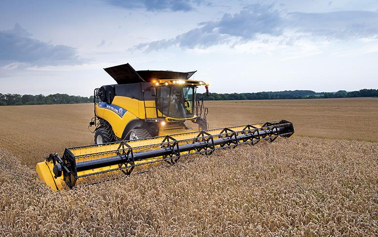 """""""Мрія"""" продається: Агрохолдинг, який орендує землі на Буковині, купить компанія із Саудівської Аравії"""