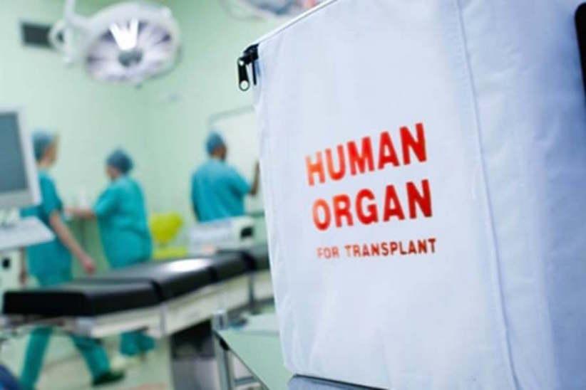 Пересадка органів вУкраїні: з 1 січня вводять нові правила – МОЗ