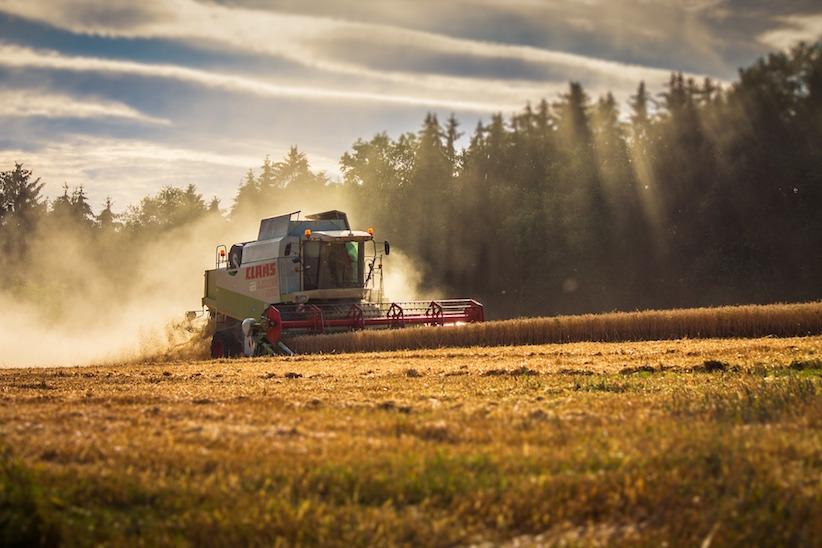 Україна – одна з п'яти найбільших країн-експортерів агропродукції до ЄС