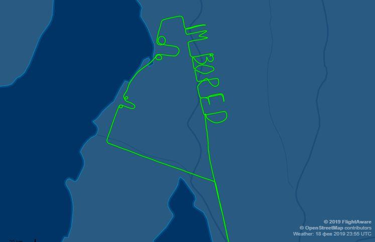 Австралійський пілот за допомогою радара намалював статевий орган
