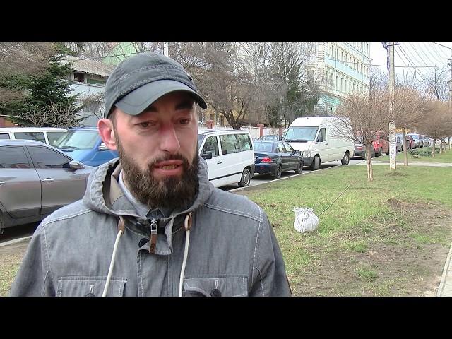 На вулиці Поповича у Чернівцях відновили знищені дерева