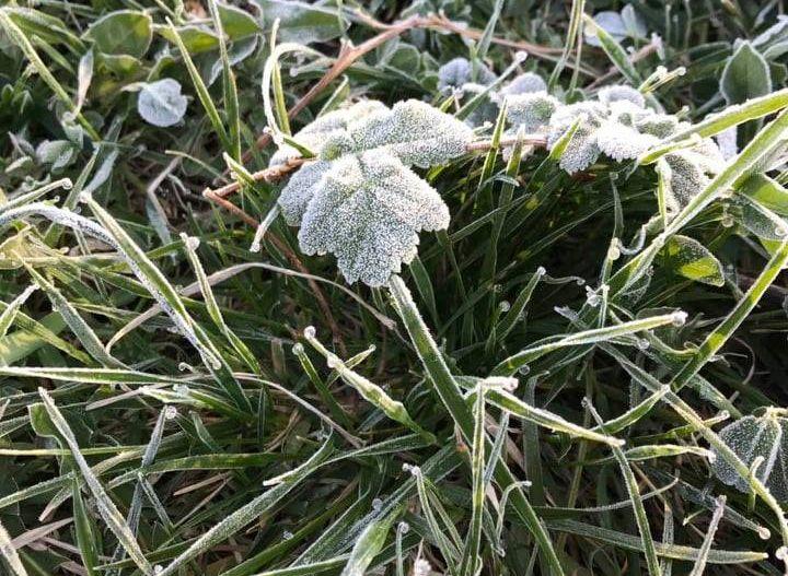 У західних областях очікуються сильні дощі та заморозки – ДСНС