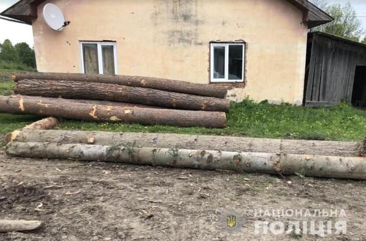 На Вижниччині поліція розшукала крадія лісодеревини