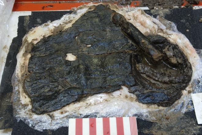 Щит із кори знайшли археологи Великої Британії