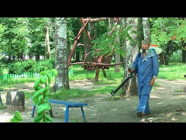 Два парки у Чернівцях обробили від кліщів