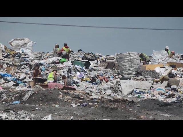 До 2030 року 70% побутових відходів в Чернівецькій області відправлятимуть на переробку