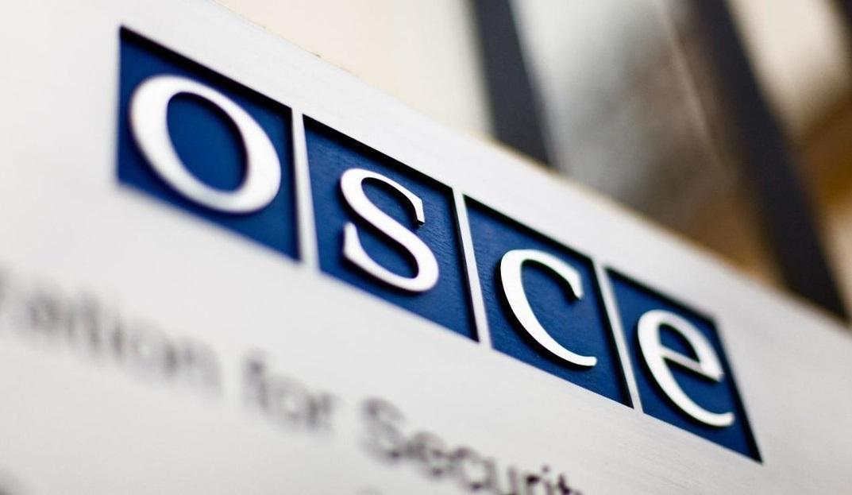 Танки та «Жаби»: місія ОБСЄ зафіксувала техніку окупантів за лініями відведення