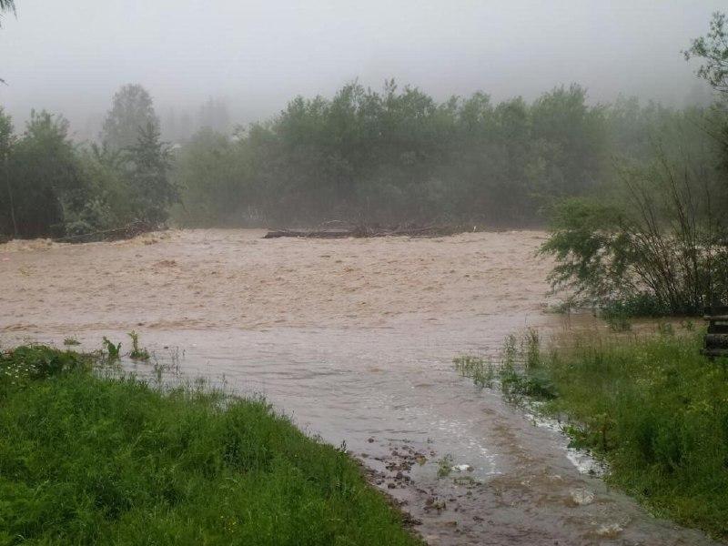 Негода на Буковині: у кількох населених пунктах спостерігаються підтоплення