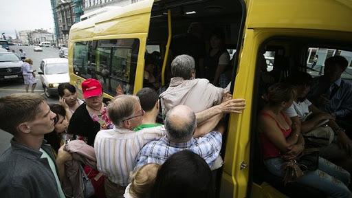 Ще 12 автобусів. У Чернівцях збільшують кількість маршруток на лінії