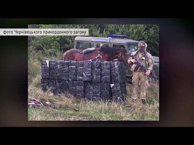 Двох коней та гору ящиків з тютюновою контрабандою виявили на Буковині прикордонники