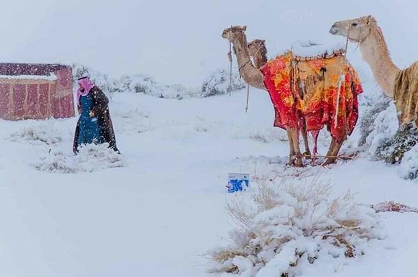 У пустелі Сахара випав сніг – ЗМІ