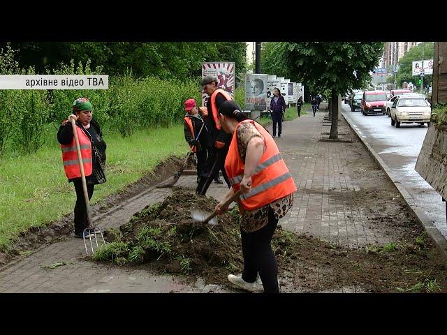 Через коронавірус минулої весни не висадили жодного дерева: у Чернівцях проведуть озеленення міста