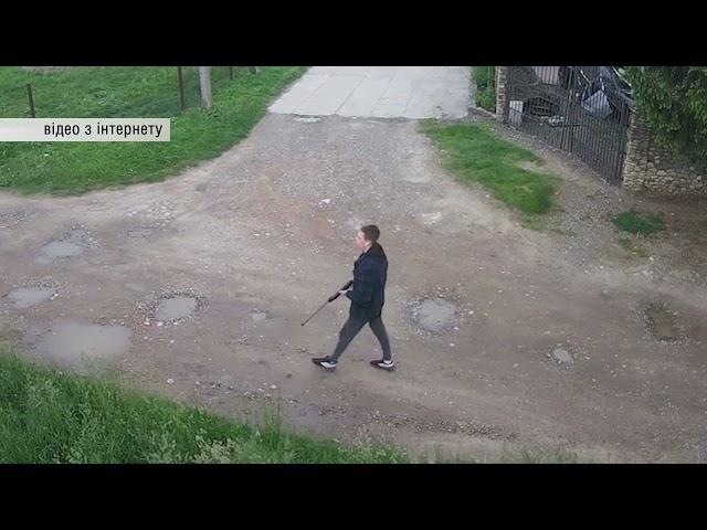 У Чернівцях невідомий чоловік стріляв по безпритульним собакам зі зброї
