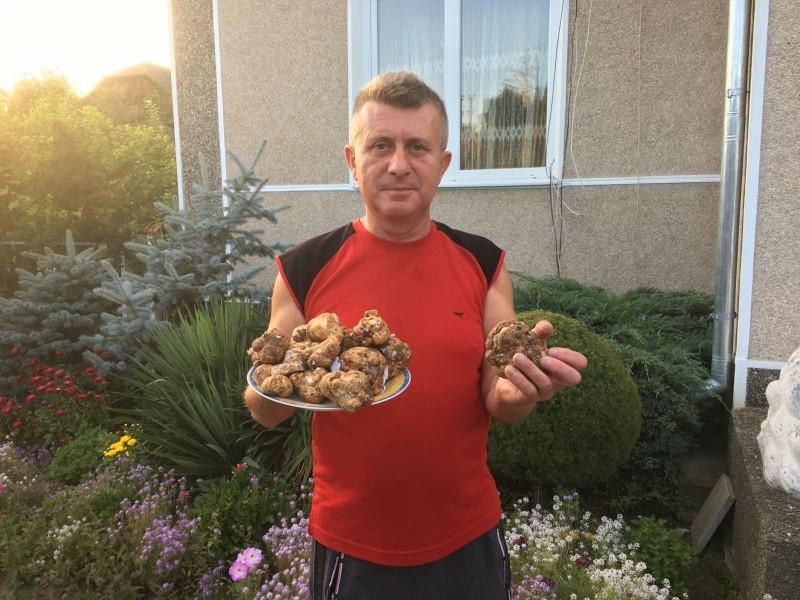 400 євро за 100 грам: на Буковині вирощують екзотичні гриби