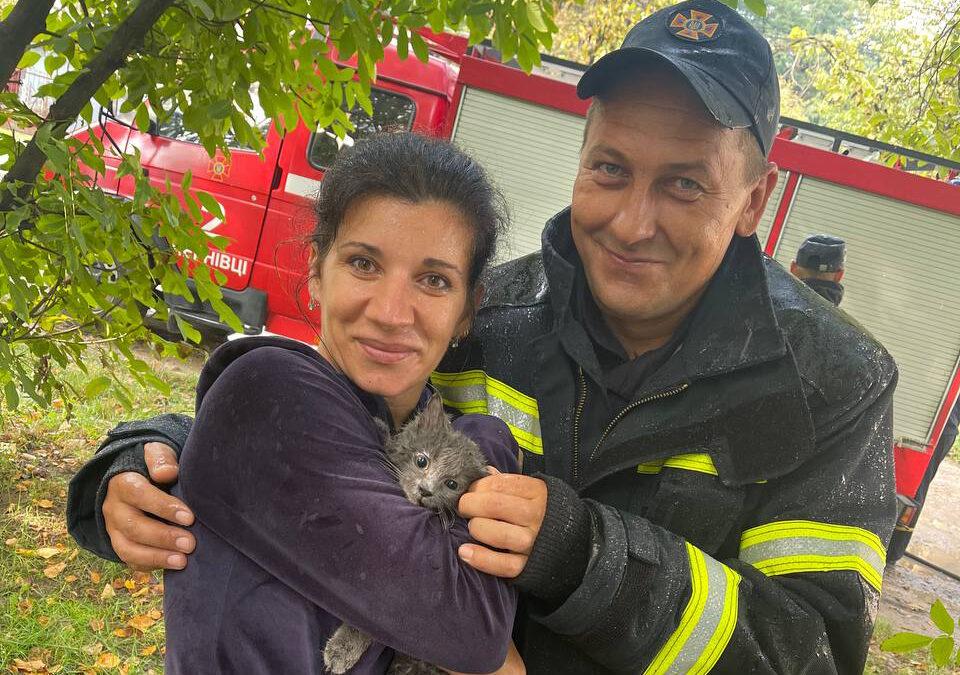 У Чернівцях рятувальники врятували кота, котрий заліз на високе дерево